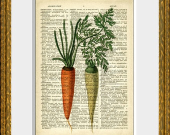 Dictionary Art Print - CARROTS - an antique dictionary page with a retooled antique vegetable illustration - fun vintage kitchen wall decor