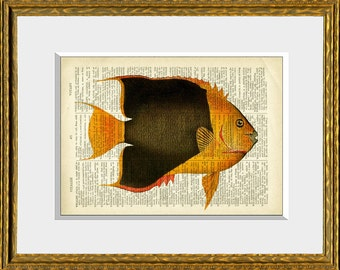 COLORFUL TROPICAL FISH 2 recycled book page art print - upcycled antique dictionary page with a retooled antique ocean illustration
