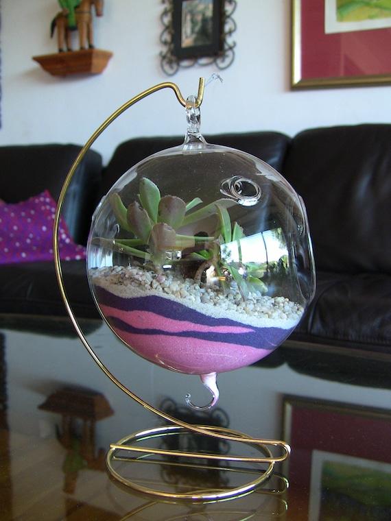 Items similar to Succulent Terrarium, Succulent Orb ...