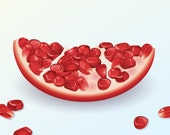 Pomegranate Slice Art Print - kitchen, wall art, food, fruit, red, dining room
