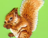 New Large Embroidered Squirrel Iron On Appliques, Lot of 2, Wholesale