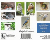 Cards:  WordyBird-B (blank-inside note cards, featuring the Eastern Bluebird)