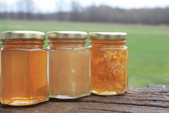 Honey Sampler 3 Raw Varieties of Honey from the Bees