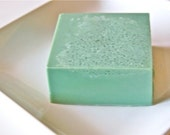 Texas Barrel Cactus Sea Salt, Goat's Milk Soap