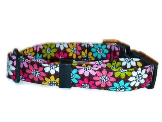 """Floral Dog Collar Multi Colored Daisies - """"Going Daisy"""" - NO EXTRA CHARGE for colored buckles"""