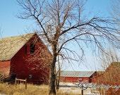 Montana Barn one  8x12 Fine Art Photograph