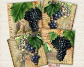 VINTAGE GRAPES STORIES 3.8x3.8 inch & 4x4 inch Digital Collage Sheet Printable Download for Coasters Magnets Greeting Cards