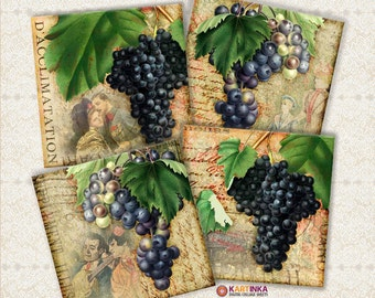 3.8x3.8 inch & 4x4 inch images VINTAGE GRAPES STORIES Digital download for Coasters Greeting Cards Gift Tags Vintage Paper Craft Fathers Day