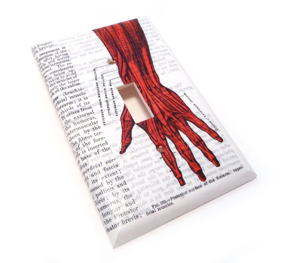 Light switch cover, blood red hand anatomical switch plate