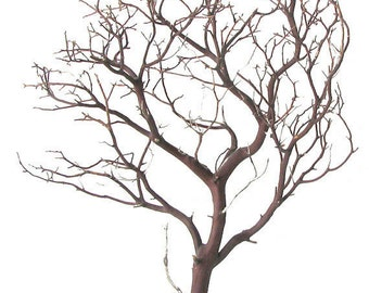 Natural Red Manzanita Branches - 2 pieces, 24 inches tall