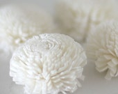 balsa/sola flowers - for weddings and crafting 30 pieces FREE SHIPPING