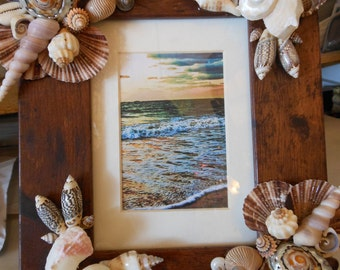 Beach Decor Shell Picture Frame - Seashell Frame - Shell Frame -  Beach