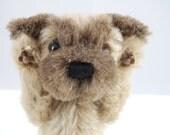 Archie, cute artist bear puppy by Rowan Bears.