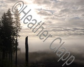 Foggy valley, fog, early morning, clouds, woods, trees, oregon photo art