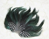 Foxy Forest Green Feather Pad