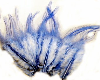 Craft Feathers Sky Blue  2 to 4 inches long qty 12 blue craft feathers