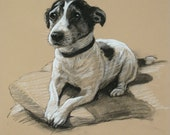 Beautiful Terrier dog LE fine art print 'Smiler' from an original chalk and charcoal sketch