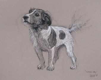 Jack Russell Terrier dog art dog lover gift LE fine art print from a chalk and charcoal available unmounted or mounted ready to frame
