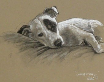 Terrier dog art canine limited edition art print 'Looking at you...' from an original chalk and charcoal sketch drawing by artist H Irvine