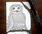 Owl sitting on branch, with his calling sound-WHOO, love, Series 3 of 3 ACEO's