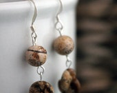 The Bruneau - Picture Jasper and Sterling Silver Earrings