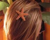 Sugar Starfish Clip