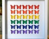 Rainbow Butterfly Shadowbox