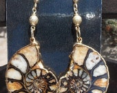 Sale-Perfect Ammonite Earrings