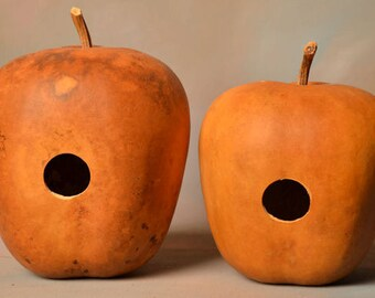 Two (2) Apple Gourd Birdhouses; Bird house gourds; Natural gourds