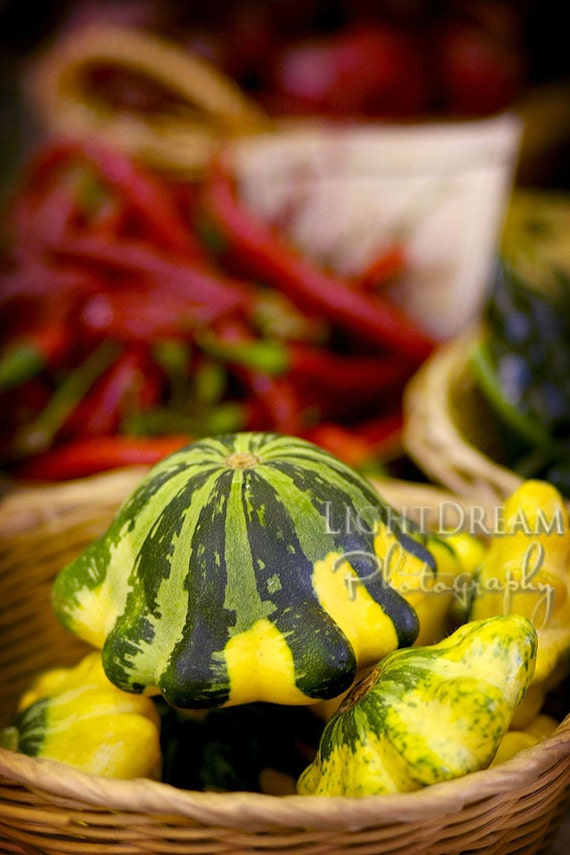 Summer Squash - Food Photography - Kitchen Art - Farmers Market - Produce Photography - Organic - Gardening