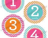 Modern Baby Girl Monthly Onesie Stickers Set