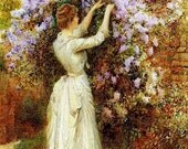 Victorian lady picking lilacs card