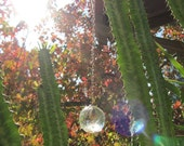 "Lemurian Crystal Pendulum ""L.O.V.E. Seed"" (Love Our Vibrant Earth) by Joyful Earth Crystals"