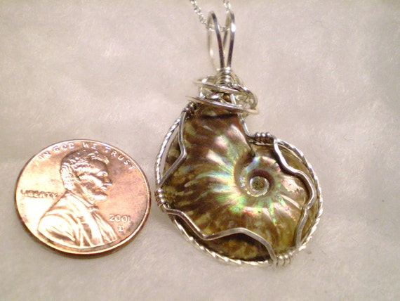 Ammolite Fossil Opalized on one side, brown on other side (Medium) Pendant Wire wrapped with Anti-Tarnish 930 Sterling Silver Pendant