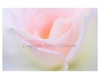 Abstract Rose Photo Note Cards, Set of 4, Fine Art Photography