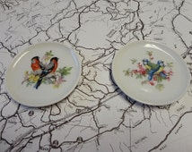 Vintage Decorative Bird Plates Set of Two