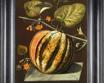 FRUIT PRINT Melon 8X10 Botanical Art Print 9 Antique Brookshaw Beautiful Orange Green Stripy Melon Blooming Flowers Summer Garden