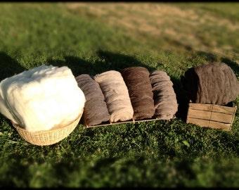 Organic Jacob Sheep Wool Roving - sampler package