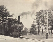 """Digital photo of vintage postcard of """"Edaville Passenger Train Number 4 Approaching the Crossing at Eda Avenue    postcard028"""