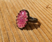 pink and beige adjustable ring with deep pink Queen Annes pressed real flower and glass cabochon on blue