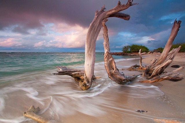 Sale caribbean beach sunset limited edition photo by klgphoto for Artworks for sale online