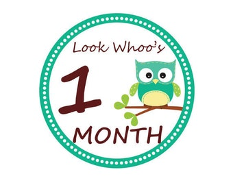 INSTANT DOWNLOAD Monthly Owl Tummy Tags - (DIY Printable Stickers) /Iron-on Transfers - Perfect for Monthly Baby Photos