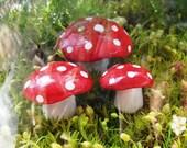 Handmade Clay Mini-Miniature Mushrooms- Terrarium/Fairy Garden Accessories