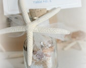 10 x Wedding Favor - Place Card or Table Number Holder - Beach in a Bottle - Starfish Sea Shells - Sand