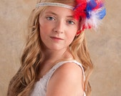 Fabulous feathers hair clips