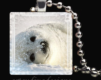 BABY SEAL Arctic Animal Snow Glass Tile Pendant Necklace Keyring