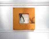 Orange Framed Bird Cutout