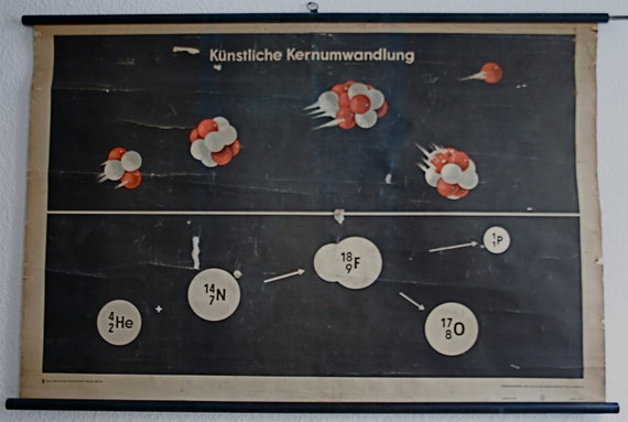 Vintage East German Pull-Down Science Educational Classroom Poster