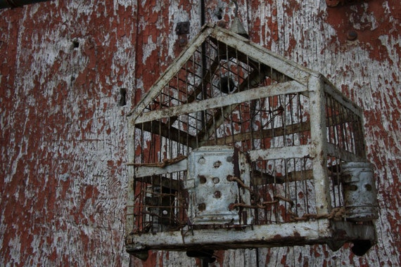 Very rustic birdcage home made