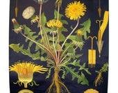 Dandelion Vintage Botanical Wall Hanging - Roll Chart - Retro Decor